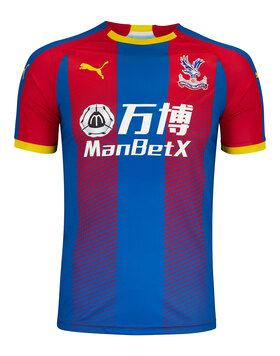 Adult Crystal Palace 18/19 Home Jersey