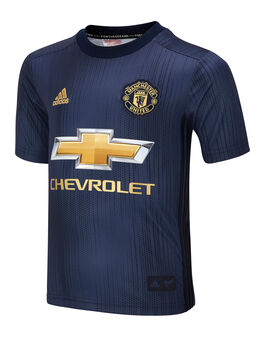 Kids Man Utd 18/19 Third Jersey