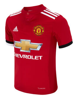 Kids Man Utd 17/18 Home Jersey
