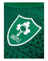 Adult Ireland Home Jersey 2018/19