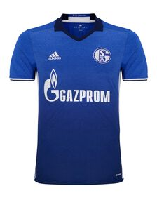 Adult Schalke 04 17/18 Home Jersey