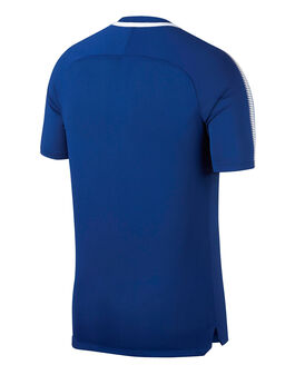 Adult Chelsea 17/18 Training Jersey