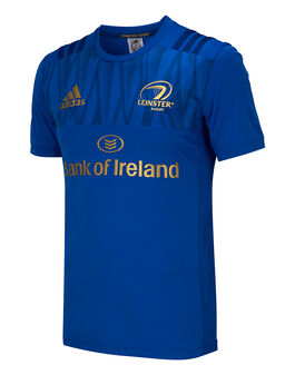 Adult Leinster Performance Tee 2018/19