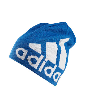 Leinster Supporters Beanie