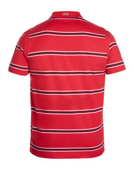 Mens Lions Cotton Stripe Polo