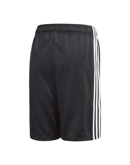 Older Boys Trefoil Shorts