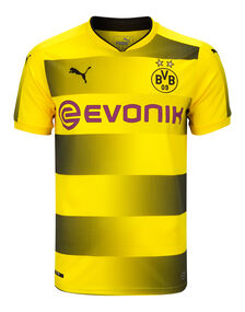 Adult Dortmund 2017/18 Home Jersey