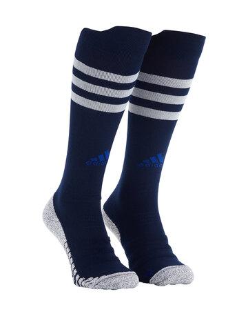 Adult Leinster 21/22 European Socks