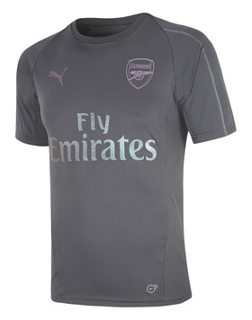 Adult Arsenal Training Jersey