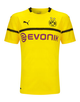 Adult Dortmund 18/19 Cup Jersey