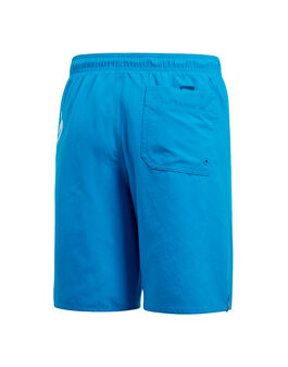 Older Boys Linear Shorts