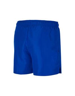 Mens 4 Inch Volley Short