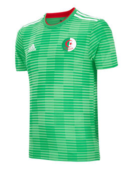 Adult Algeria WC18 Away Jersey