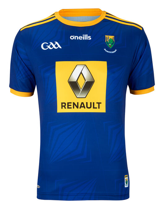 Adult Wicklow 2019/20 Home Jersey