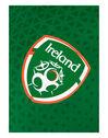 Kids Ireland Home Jersey