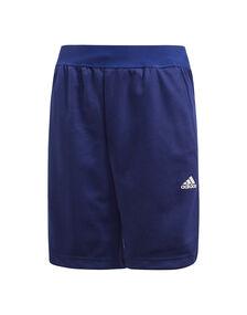 Older Boys Essentials Shorts