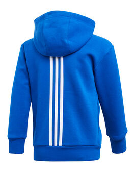Younger Boys Linear Hoody