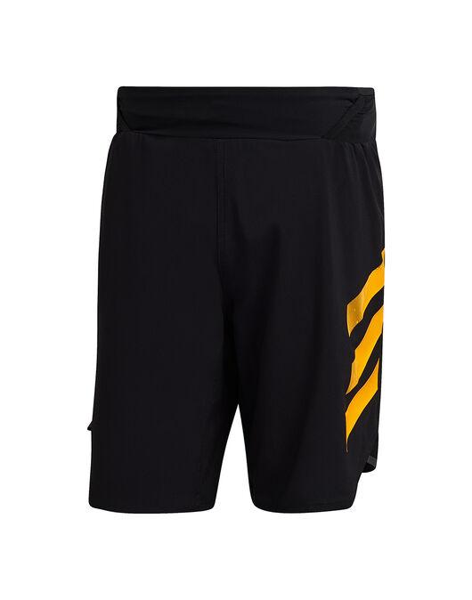 Mens Terrex AGR Shorts