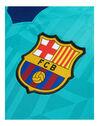 Adult Barcelona 19/20 Third Jersey