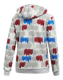 Older Boys Graphic Hoody