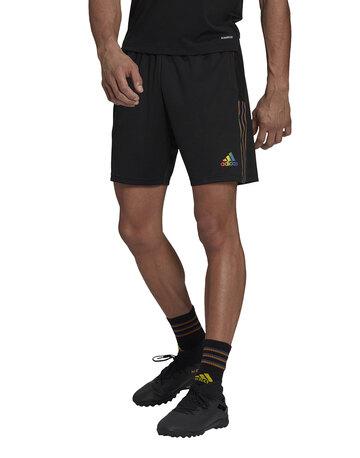 Mens Tiro Pride Shorts