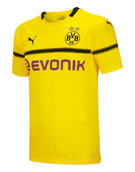 Adult Dortmund 18/19 Cup Jersey