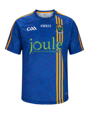 Adult Wicklow Home Jersey 2017/18