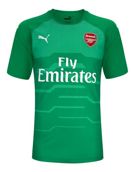 Adult Arsenal Home 18/19 GK Jersey