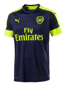 Adult Arsenal 2016\17 3rd Jersey