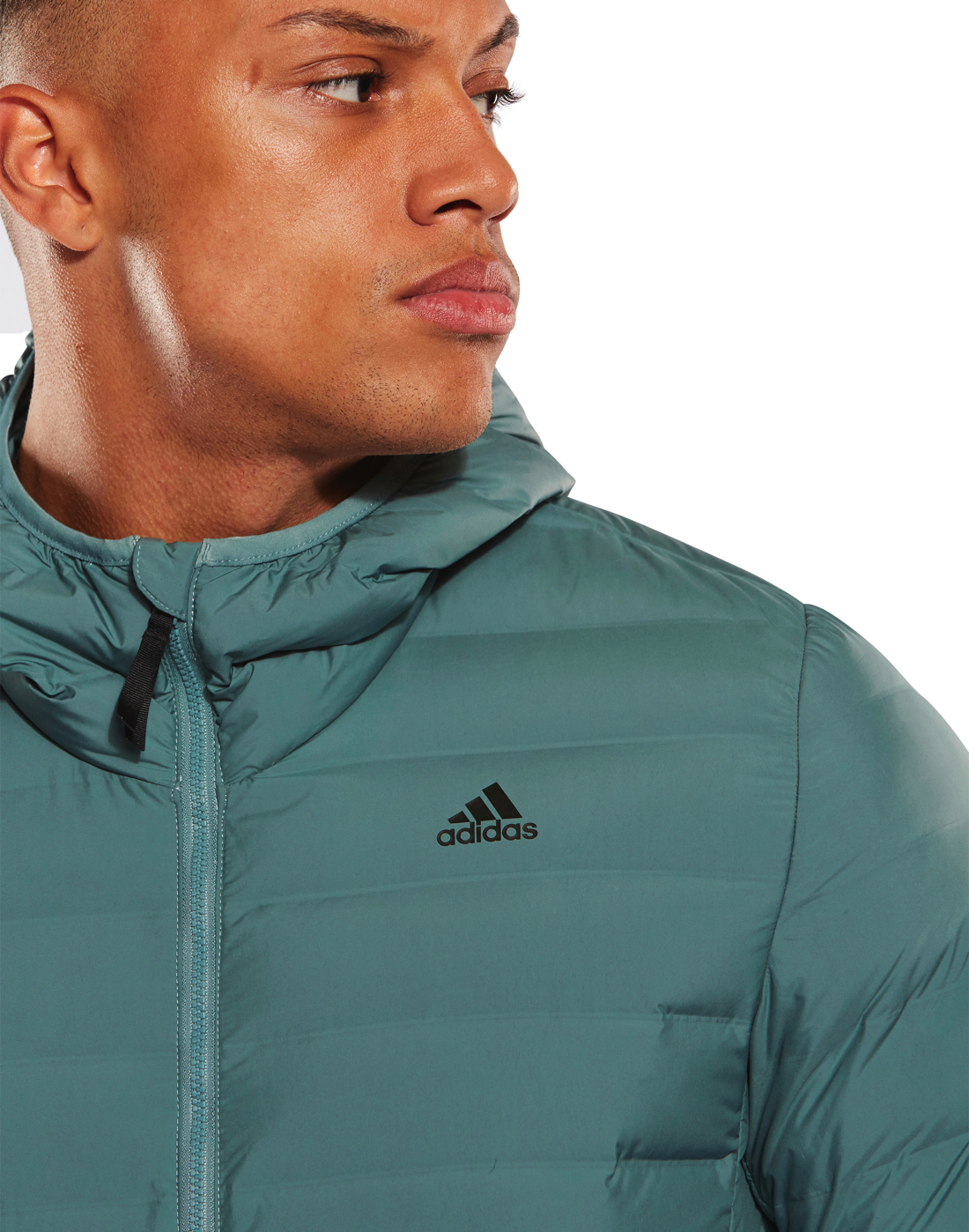 3099fcda Men's Turquoise adidas Soft Padded Jacket | Life Style Sports